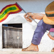 Man with hat and house and a Colombian flag in his hands — Stock Photo #45048885