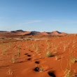 Namib Desert, Sossusvlei, Namibia — Stock Photo #45060097