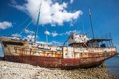 Batık Brittany — Stok fotoğraf