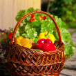 Stock Photo: Basket with harvest