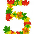 Autumn maple Leaves in the shape of number 5 — Stock Photo