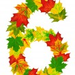 Autumn maple Leaves in the shape of number 6 — Stock Photo