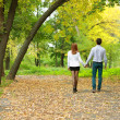 Young couple backside in autumn park - Stok fotoğraf