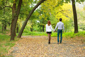 Young couple backside in autumn park — Stock Photo