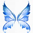 Stock Photo: Blue fairy wings