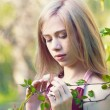 Stock Photo: Beautiful blond girl on park