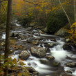 Stock Photo: Little Pigeon River in Autumn at Great Smoky Mountains National Park