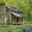 John Oliver's Cabin in Great Smoky Mountains National Park, Tennessee, USA — Stock Photo