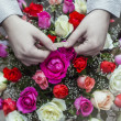 Hand with flower — Stock Photo #50701897