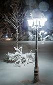 Quiet winter evening — Stock Photo