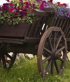 Old wooden cart with pots flowers — Stock Photo