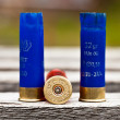 Stockfoto: Hunting ammunition