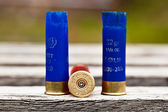 Hunting ammunition — Stock Photo