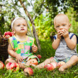 A little girl and a boy with a basket of red apples — Stock Photo
