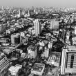 Black and white landscape of Bangkok — Stock Photo #41051923