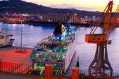 Port with cruise ships Ancona Italy — Stock Photo