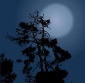 Selva negra terrible halloween — Vector de stock
