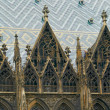 Vienna Cathedral St.Stephan Vienna Austria — Stock Photo