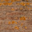 Old brick brown wall is closeup — Stock Photo #7463625