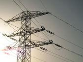 Bandada de aves en líneas eléctricas — Foto de Stock