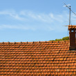 Small chimney on the roof of red tiles — Stock Photo