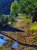 Montagne, route rurale — Photo