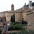 Panorama of the old city of Assisi in Italy — Stock Photo #50262291