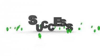Success Dollar Signs — Stock Video