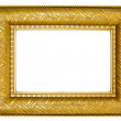 Golden Picture Frame with Ornaments — Stockfoto
