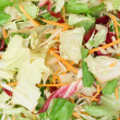 Mixed Salad Texture — Stock Photo