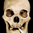 Smoking Skull — Stock Photo