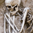 Foto Stock: Sleeping Skeleton