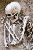 Spanie szkielet — Zdjęcie stockowe