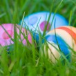 Egg Hunt — Foto de Stock