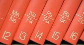 Encyclopedia in a Bookshelf Close View — Stock Photo
