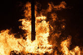 Raging Forest Fire — Stock Photo