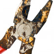 Rusty Pliers with Clipping Path — Stock Photo