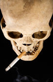 Human Skull and Cigarette — Stock Photo