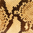 Stock Photo: Snakeskin Pattern