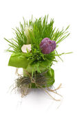Easter Decoration — Stock Photo
