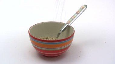 Breakfast Cereals — Stock Video