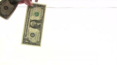 Drying Dollar Banknotes — Stock Video