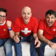 Cheering for the Swiss team — 图库照片