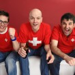 Cheering for the Swiss team — Stockfoto