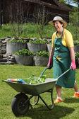 Happy senior arbetar i hennes trädgård — Stockfoto