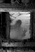 Scary halloween background — Stock Photo