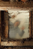 Zombie at the window — Stock Photo