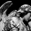 Weeping angel - Stock Photo