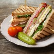 Club sandwich — Stock Photo #21378811