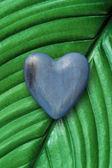 Wood heart on green leaf — Stock Photo